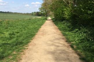 We manage the permissive paths around the Greenway route